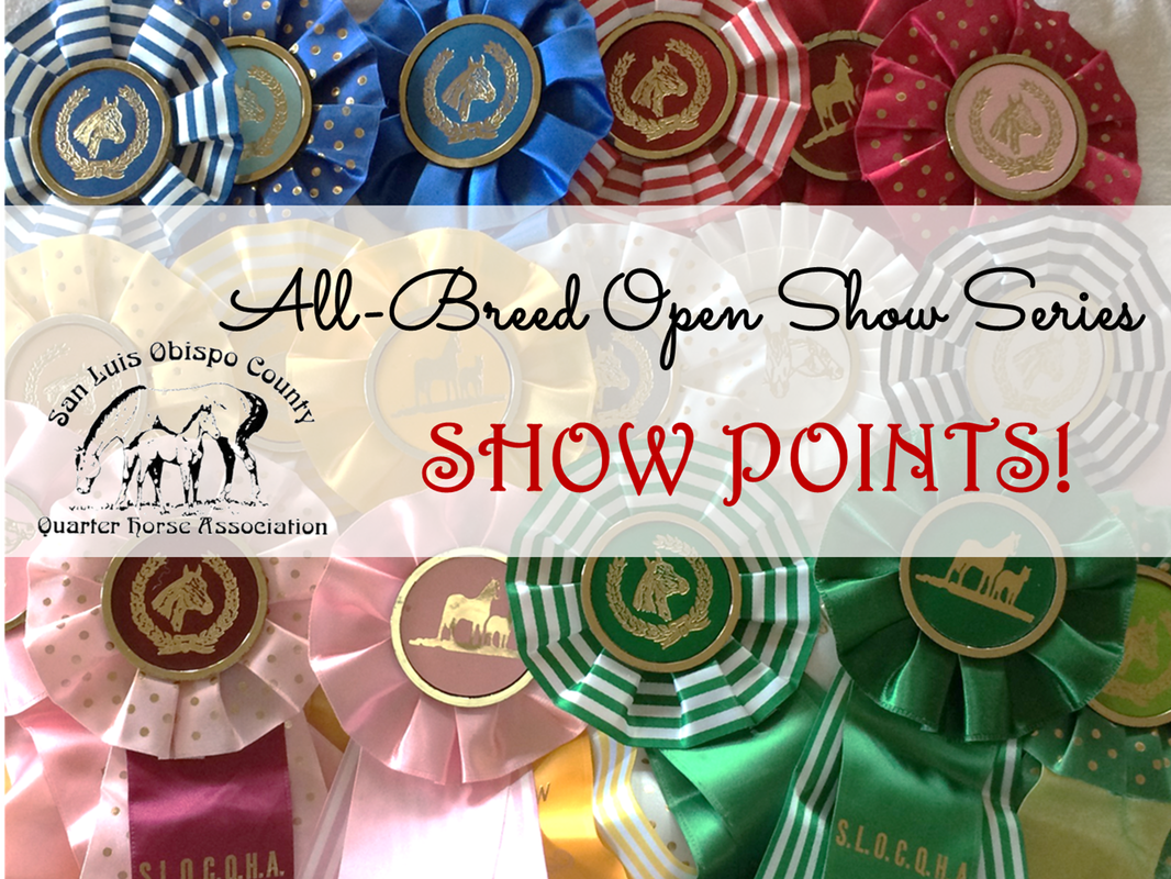 SLOCQHA Points, Open Show Points, Horse Show Points, San Luis Obispo County Quarter Horse Association, AQHA, Pat Mar Shows